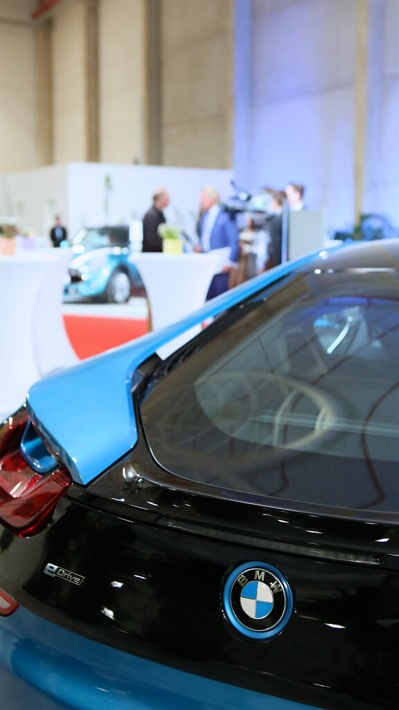 DIBAG-BMW-50.jpg
